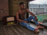 AlvinBlack online free